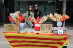Sant Jordi 2019 Viu Molins de Rei (21)