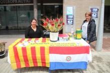 Sant Jordi 2019 Viu Molins de Rei (22)