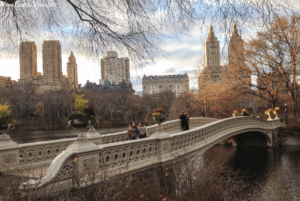 Must Do in New York City