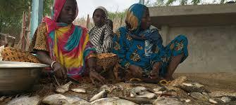 ONU Info/Dan Dickinson Sur le lac Tchad, des pêcheuses comme Falmata Mboh Ali (à droite) travaillent dur pour subvenir aux besoins de leurs familles. Au cours des dernières décennies, le lac a vu sa taille divisée par 10 et ses réserves de poissons ont fortement diminué.