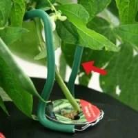 easy-up-plant-supporto-piante-per-aerogarden-Img_Principale_21461