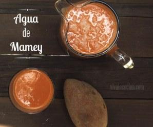 Agua de Mamey, jugo rico en vitaminas y antioxidantes. Receta rápida en 20 minutos