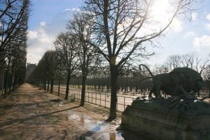 Jardin des Tuileries, 2009