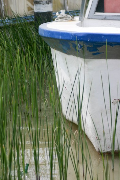 Neusiedl, 2009