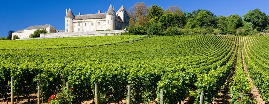 A complicada classificação dos vinhos de Bordeaux     Viva o Vinho