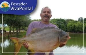 Seja um Pescador Vivapontal