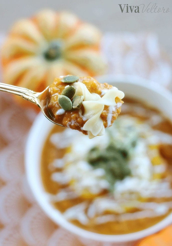 Pumpkin coconut noodle soup recipe viva veltoro im sure youre already thinking of some great egg noodle recipes to cook up this fall so youll be glad to know no yolks comes in a big variety of cuts forumfinder Images