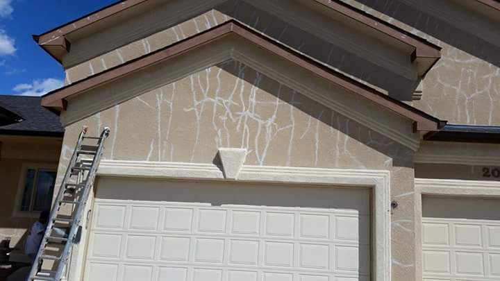 Grand Junction Painting Company Vivax Pros