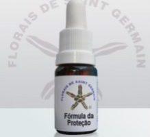 Fórmula FSG – Protecção