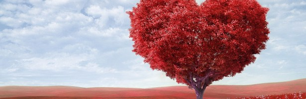 Cria as tuas intenções: Celebra o Amor em Equilíbrio