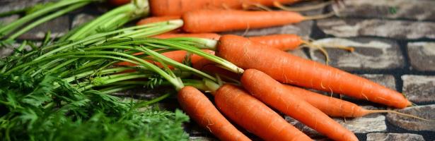 Saúde pela Boca: A Alimentação ao Serviço da Saúde