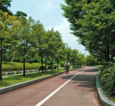 Um passeio de bicicleta por Yeouido