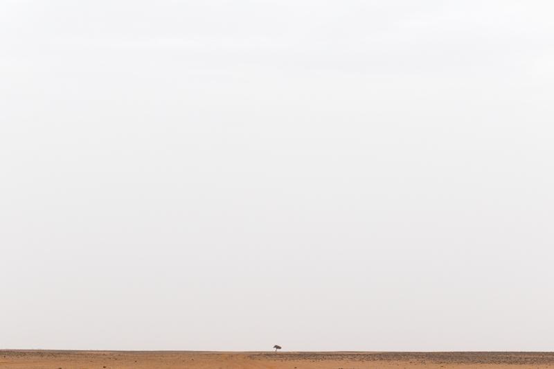 Viver a Viagem - Erg Chigaga - Marrocos - Alexandre Disaro - 105
