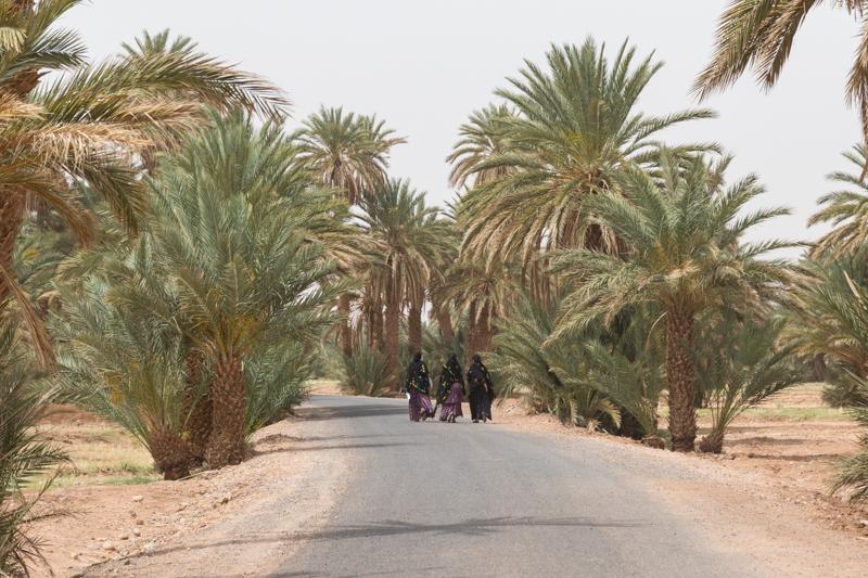 Viver a Viagem - Erg Chigaga - Marrocos - Alexandre Disaro - 118