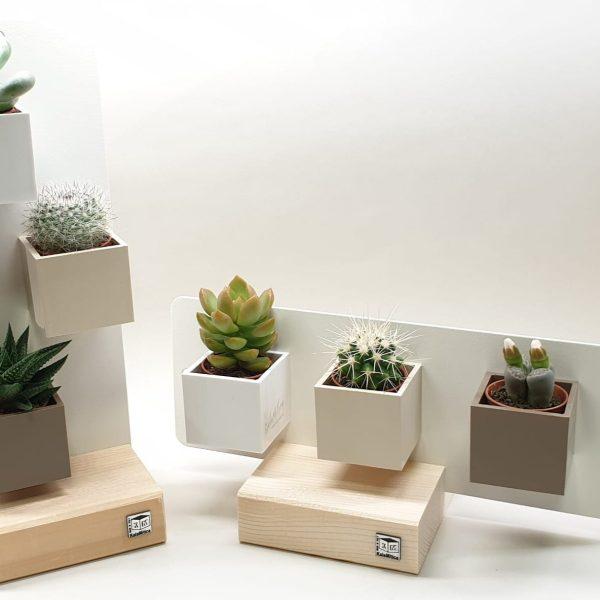 Composizioni magnetiche con piante