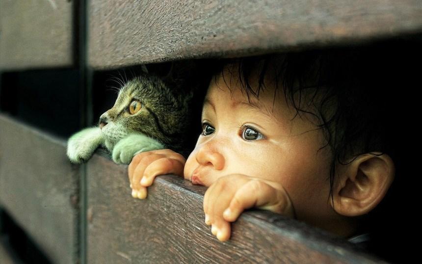 bambino-e-gatto