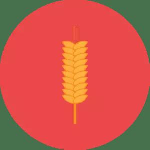 dieta-migliore-cereali-integrali