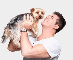 Simon Cowell è diventato vegano, ma solo per la salute!