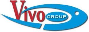Logo Vivo Group