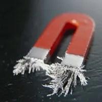 https://i2.wp.com/www.vividavvero.net/blog/wp-content/uploads/2009/12/calamita.jpg