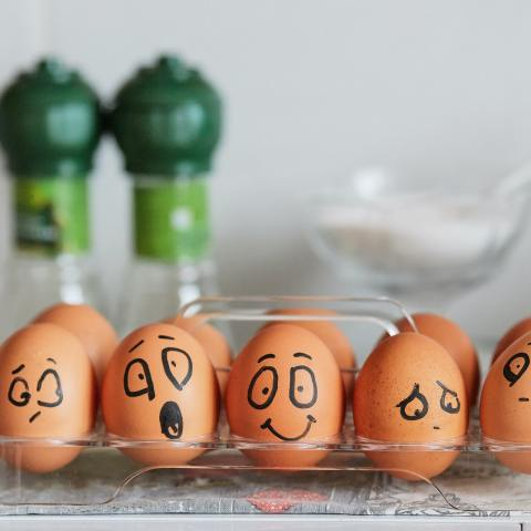 huevos-refrigerador-21-de-mayo-2020