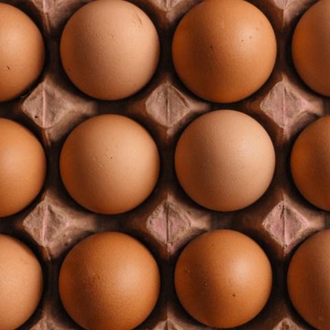 Por-estas-razones-deberías-dejar-de-consumir-huevos-del-supermercado 18/06/20