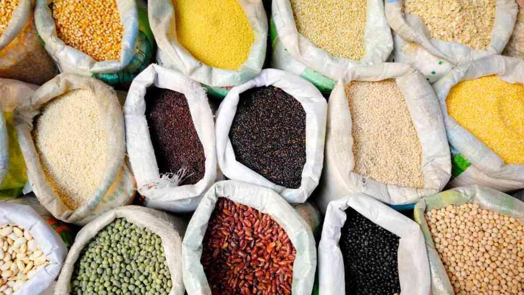 Variedad de legumbres y cereales