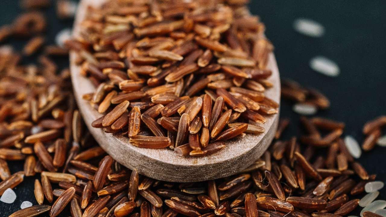 arroz integral fuente de antinutrientes