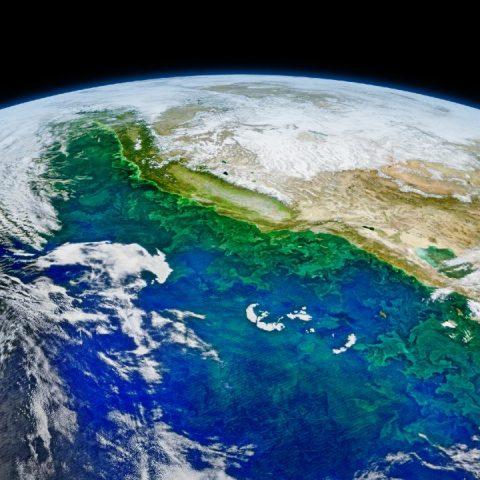 planeta Tierra 2021