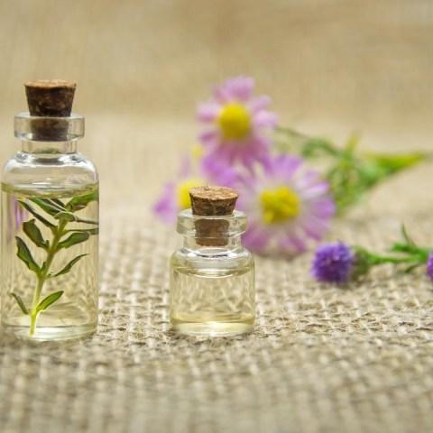 para qué sirve el aceite de jojoba y cómo usarlo para la piel y el cabello