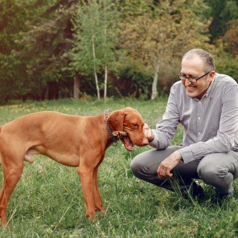 abuelito deja herencia a su perrito de la mitad de su casa
