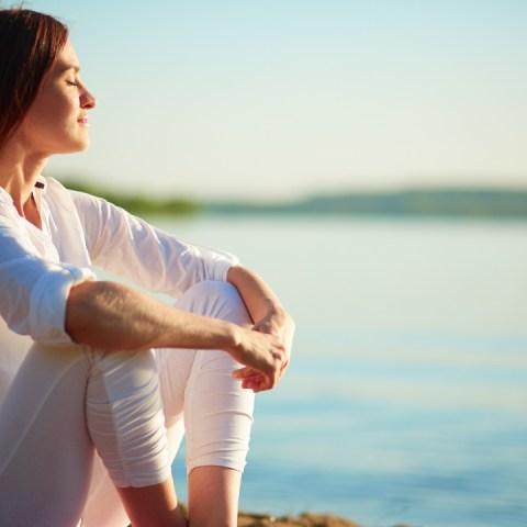 cómo entrenar al cerebro felicidad paz Harvard