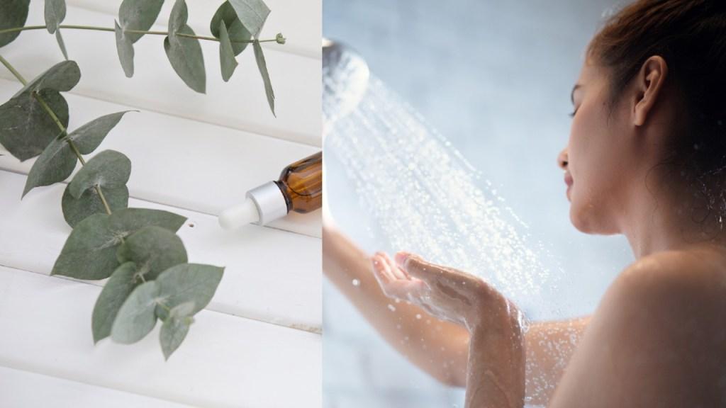 cómo hacer discos de eucalipto para la ducha