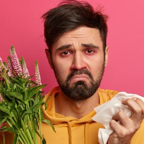 como evitar alergias de primavera en casa salud