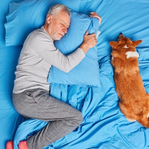 domir con tu lomito en la misma cama