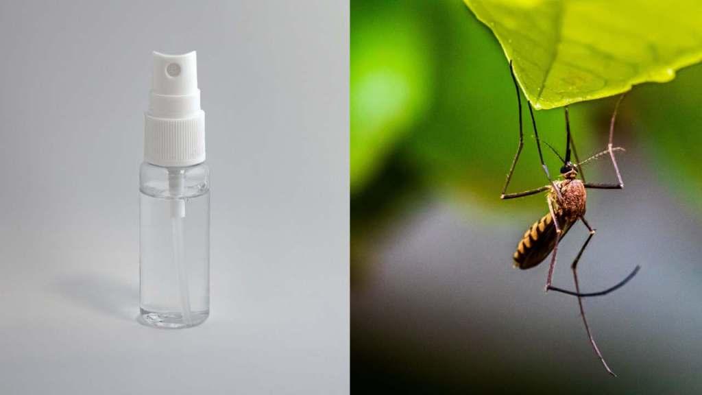 Cómo hacer un repelente de mosquitos casero ingredientes naturales