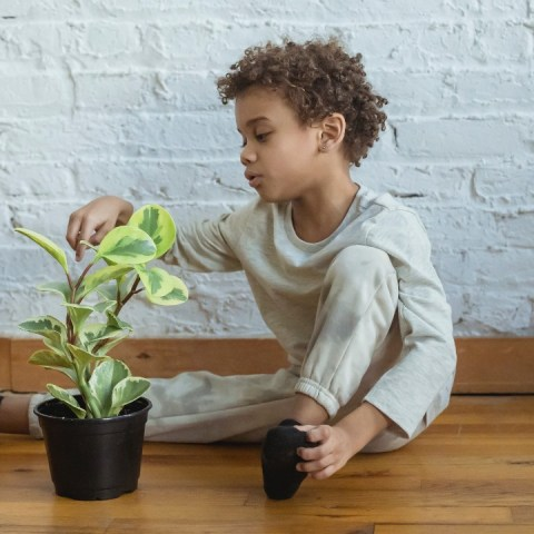 jardineria para niños