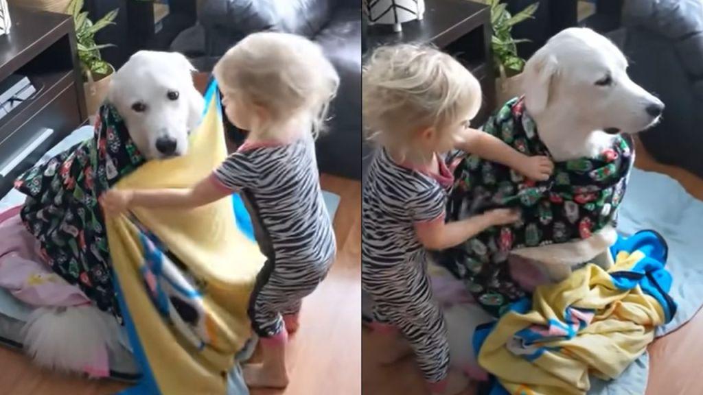 nena envuelve a perrito en cobijas