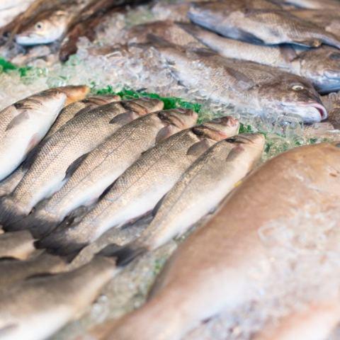 como congelar pescado para que no se eche a perder