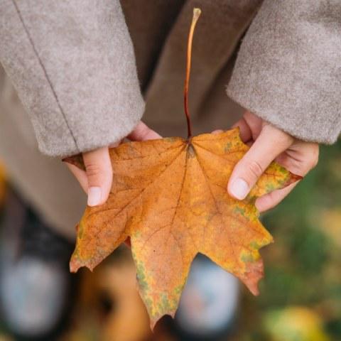 significado espiritual del equinoccio de otoño