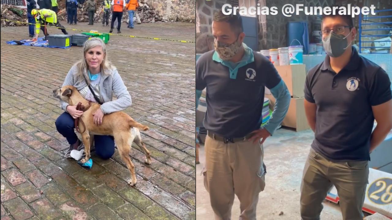 Paty es la presidenta de 'Milagros Caninos'