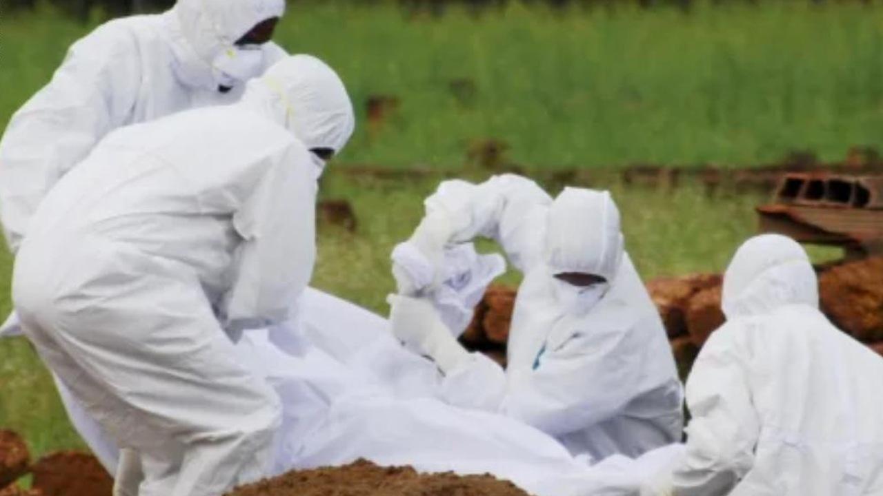 por que es tan peligroso el virus nipah