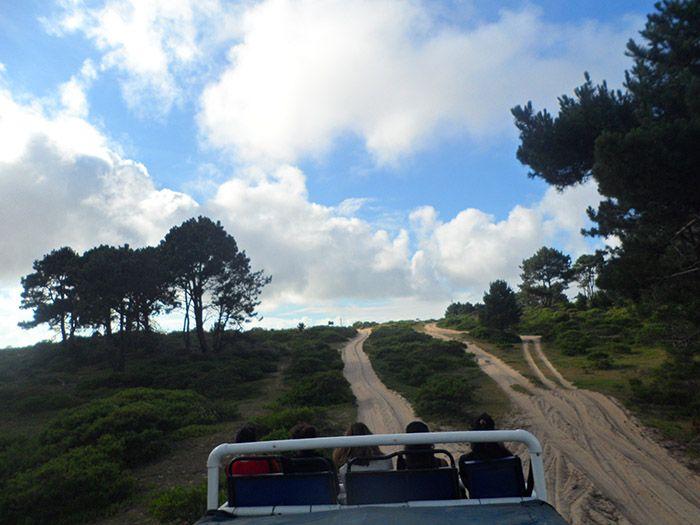Camino subidos en el camión, nosotros como no ¡en la parte de arriba!