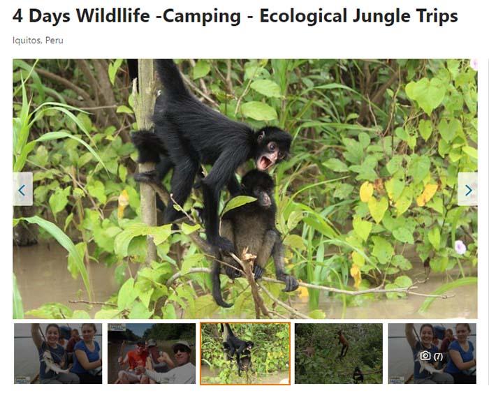 Excursión Pacaya Samiria Amazonas 4 días 3 noches