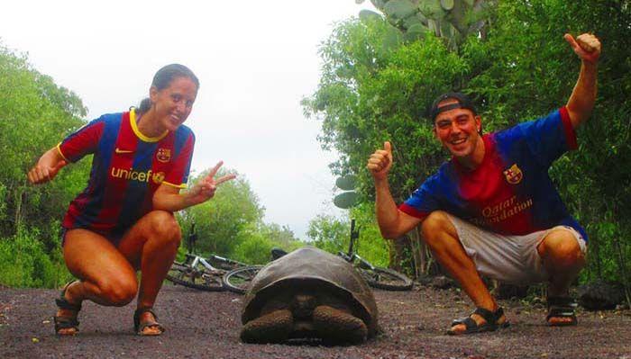 Camino al Muro de las Lágrimas hay muchas tortugas en libertad, aunque bastante miedosas.