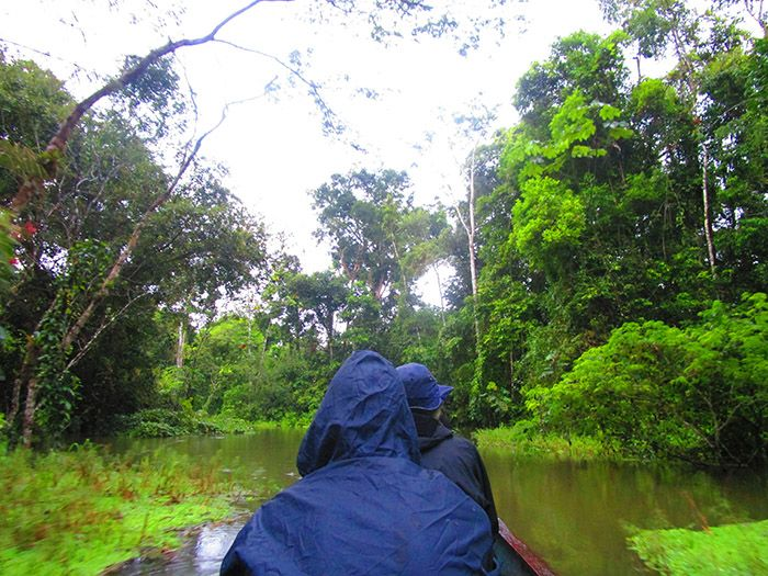 Tour Amazonas Perú