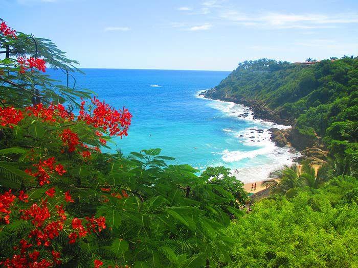 Playa Carrizalillo en Puerto Escondido