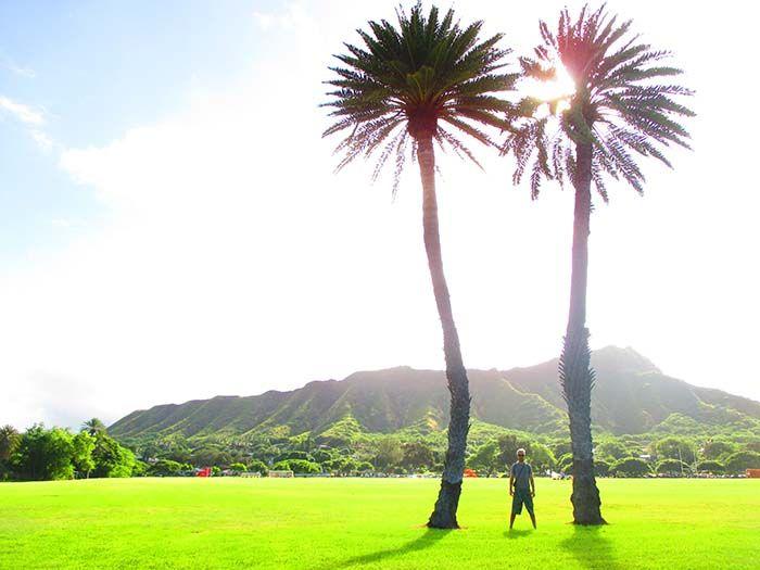 Salir del hostel entre rascacielos, dar dos pasos y encontrarte con esto, simplemente te dibuja una sonrisa de buena mañana. ¡Aloha!