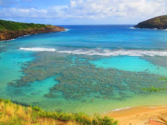 Oahu (216)