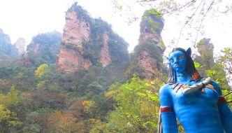 El bosque de Avatar está en Zhangjiajie National Forest Park